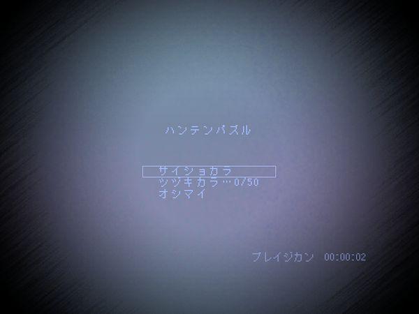 ハンテンパズル1.JPG